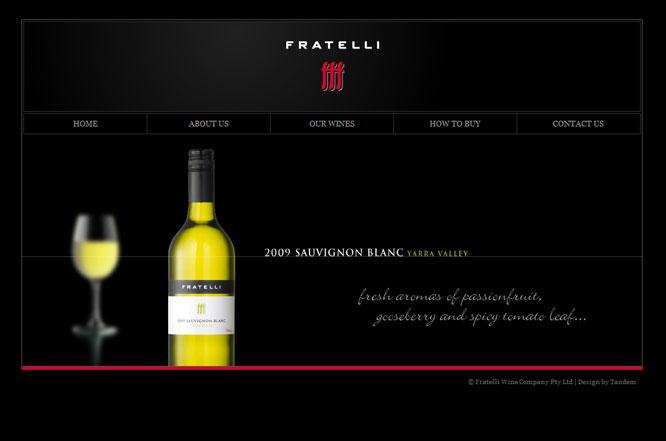 Website Design - Adelaide - Tandem Graphic Design